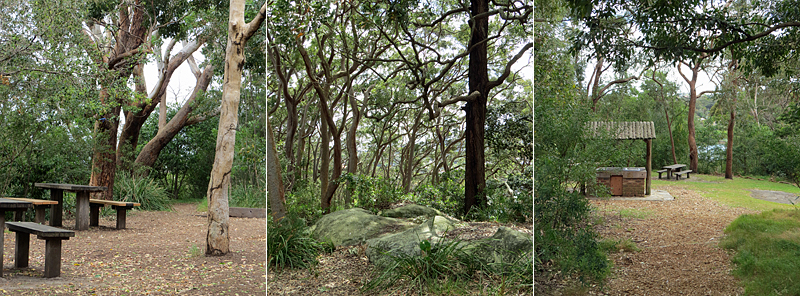 Waverton - Balls Head Reserve - Picnic Areas/facilities & walks