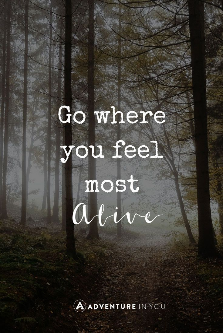 Go Where You Feel
