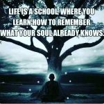 Life Is A School Where You Learn…