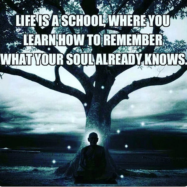 Life Is A School Where You Learn...