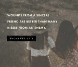 Wounds From A Sincere Friend....