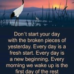 Don't Start Your Day With...
