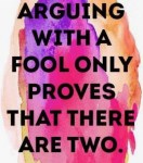 Arguing With A Fool...