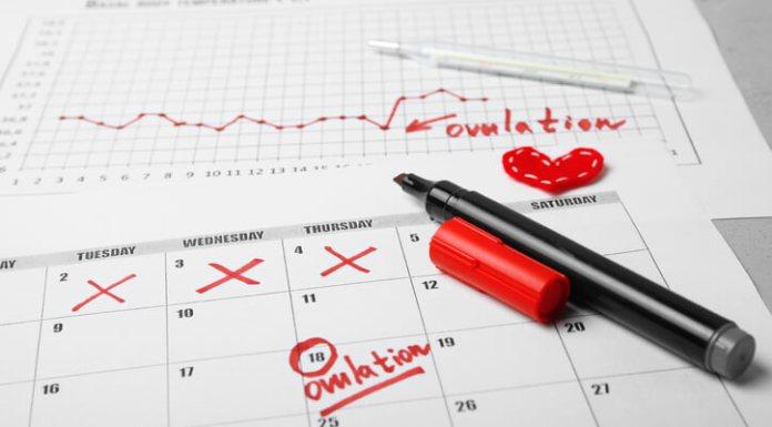 ovulation calculators