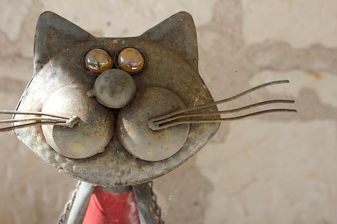 Cat Diderot