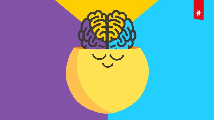 The Netflix/Headspace logo featuring a yellow smiley face with its brain exposed.