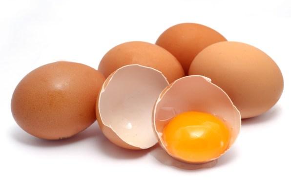 eggs - Lifestan