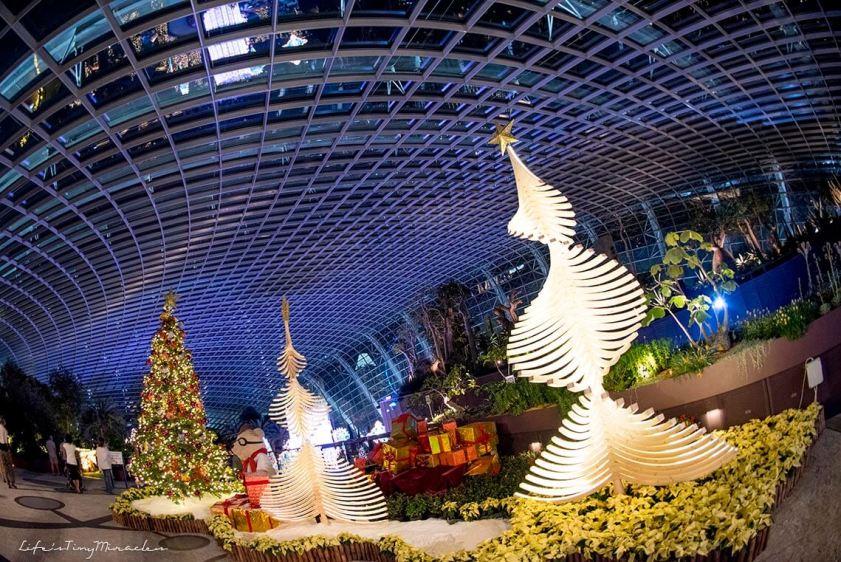 Christmas Wonderland 02