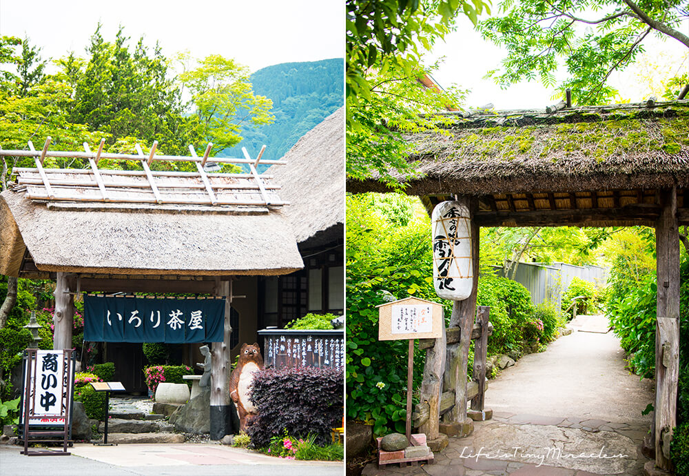 Hakone Collage 1