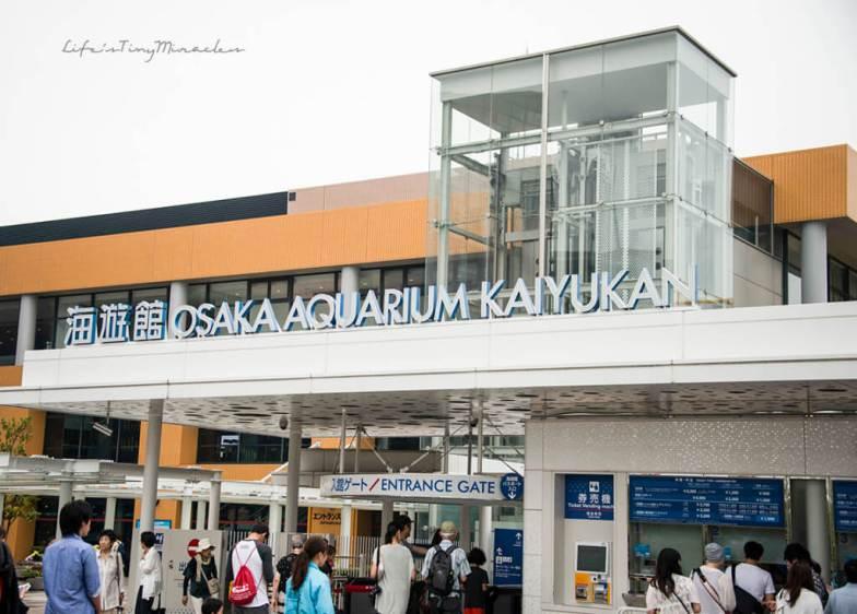 Osaka-Aquarium56