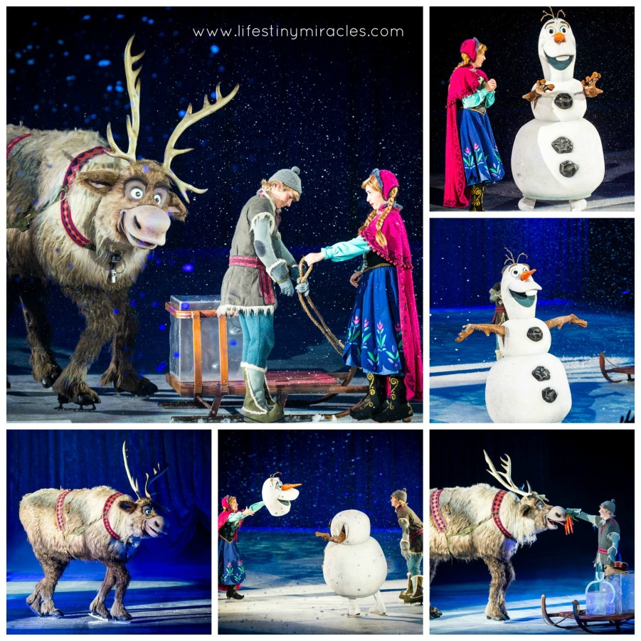 DisneyOnIceSG Sven Collage