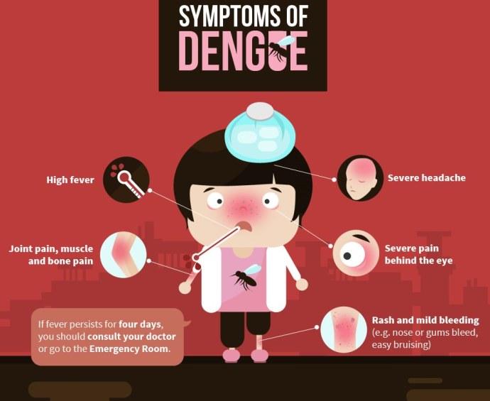 dengue-2
