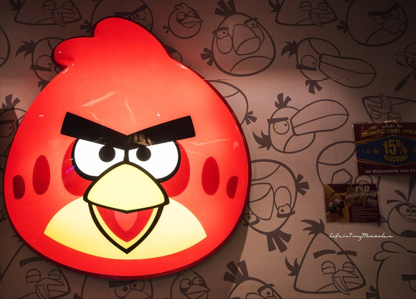 Angry Birds Activity Park258
