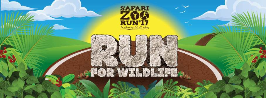 safari-zoo-run2