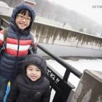 Hokkaido: Asahiyama Zoo