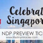 NDP 2017: The People, Parade and Passion