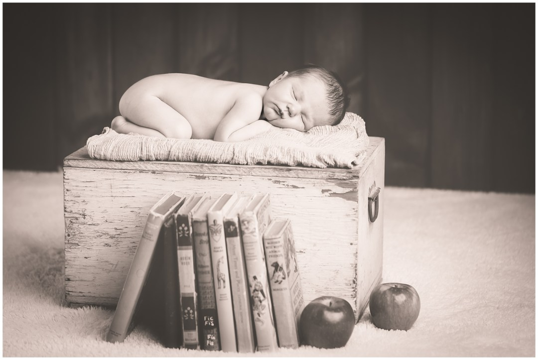 ChristmasMiniSessions_family-baby-kids_Berks-County-Reading-PA_0057.jpg