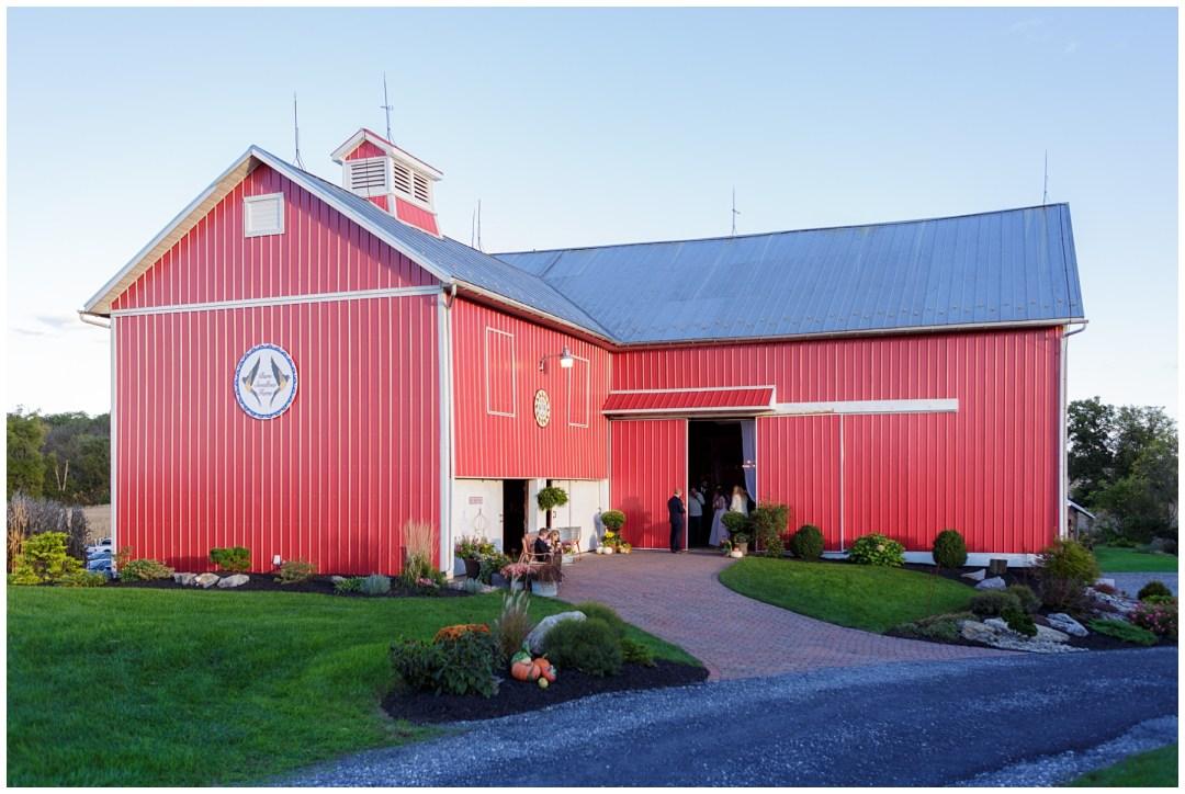 barn swallow farm in northampton