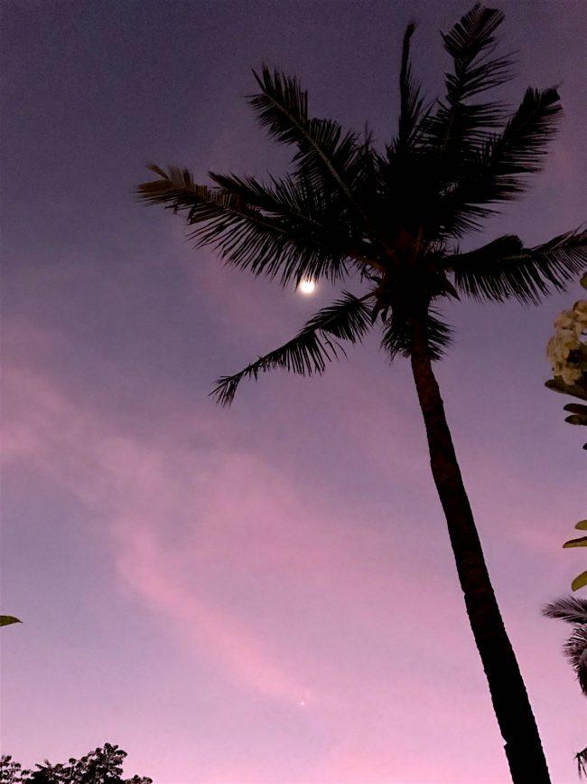 Villa Nero Palms n Stars
