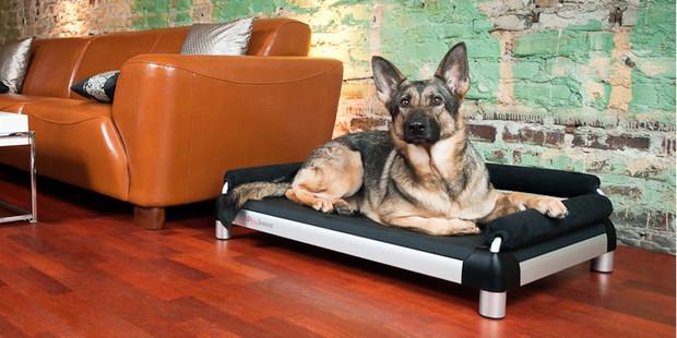 DoggySnooze Doggy Home Decor