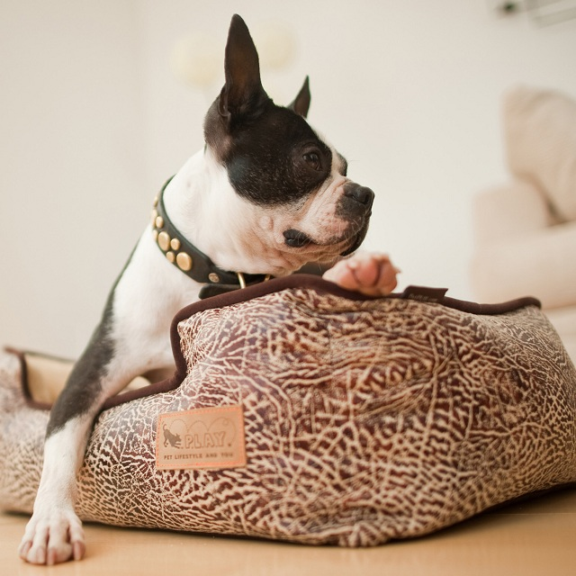P.L.A.Y. Pet Lifestyle and You Lounge Bed Savannah + Grey