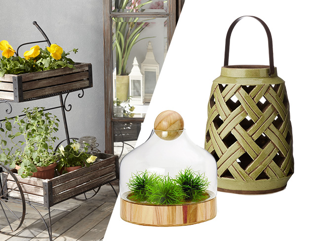 Create an Indoor Autumn Garden at MYHABIT