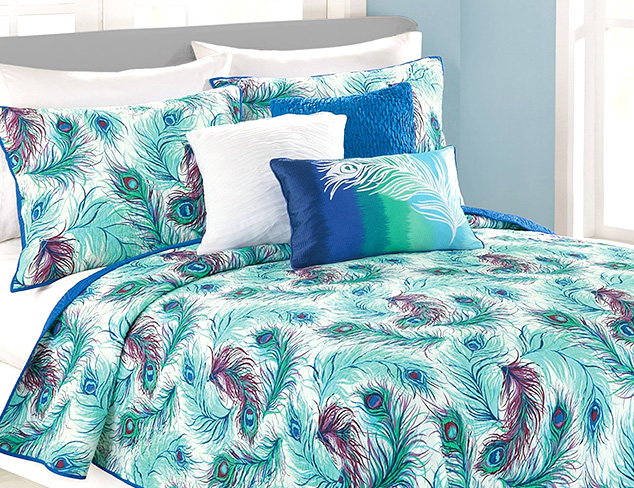 New Markdowns: Nanette Lepore Bedding at MYHABIT