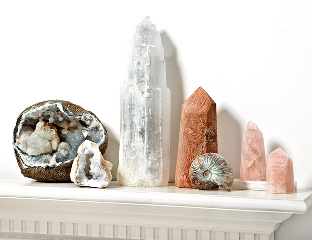 Nature's Artifacts: Fossils, Minerals & More at MYHABIT