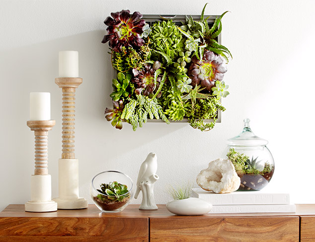 Up to 70% Off: Nature-Inspired Décor at MYHABIT