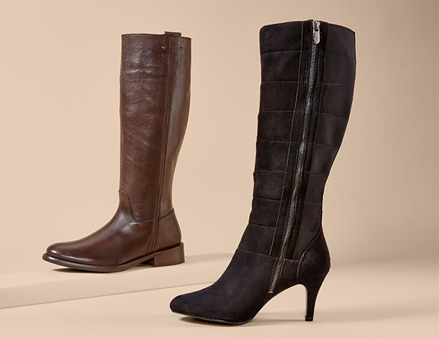 The Shoe Boutique Tall Boots at MYHABIT