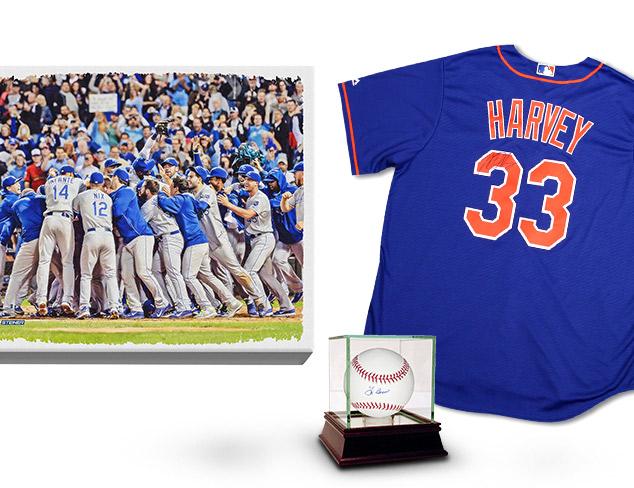 Last Look Baseball Memorabilia by Steiner Sports at MYHABIT