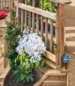 Deck Planters built in design