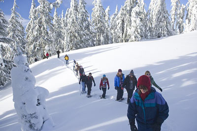 group snowshoeing in simcoe county