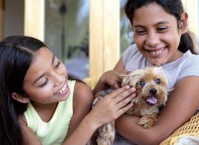 pet adoption pet parenting