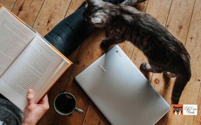 Midweek Joy Reads: 102 Kindle Bargains!