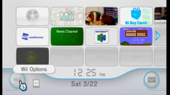 Select Wii Options on the Wii home menu.