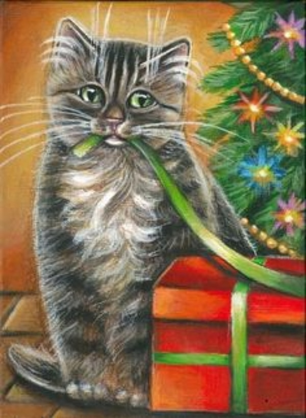 The Fascination Of Holiday Pet Portraits Life With Cats