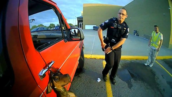 7.12.16 - Police Save Hanging Dog2