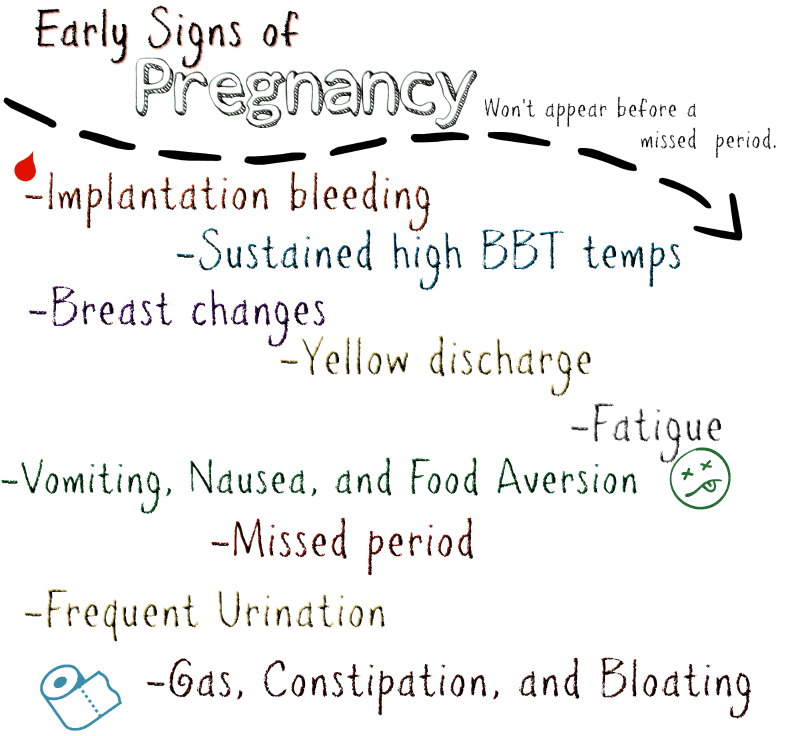 Early Signs Of Pregnancy Quiz