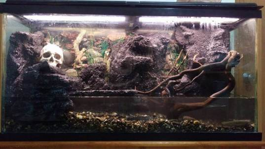 DIY Foam fish tank aquarium background