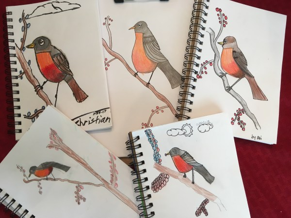 Robin nature journal bird John James Audubon artist study