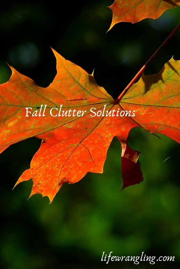 5 Steps to Remove Clutter This Fall 12