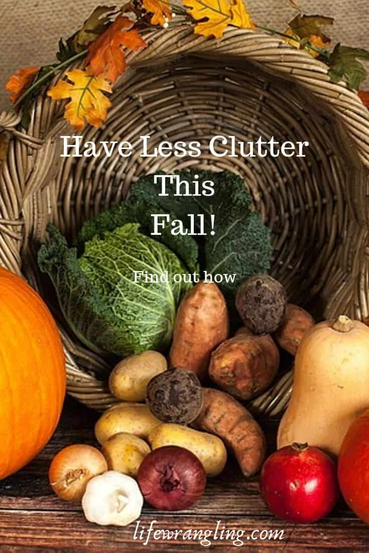 5 Steps to Remove Clutter This Fall 8