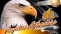 LIDOM sigue labor de mediación en las Águilas