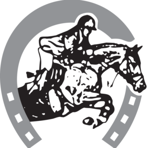 CHAS 2018_NEGRO - copia