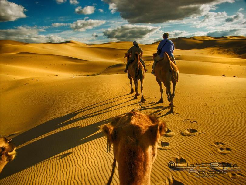Mongolei 2003 143 - Mongolei 2003-143 - urlaubsfotos, natur, allgemein, abseits-des-alltags -