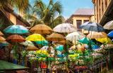 Mauritius 2018 1430 1 - Mauritius 2018-Reisebericht & Fotos - urlaubsfotos, outdoor, non-commercial, naturfotos, natur, funstuff, allgemein - Urlaub, outdoor, Naturfotos, Ein Tag im Leben eines Fotografens, Draußen, Die Geschichte hinter den Fotos