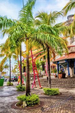 Mauritius 2018-1513