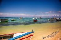 Mauritius 2018 208 1 - Mauritius 2018-Reisebericht & Fotos - urlaubsfotos, outdoor, non-commercial, naturfotos, natur, funstuff, allgemein - Urlaub, outdoor, Naturfotos, Ein Tag im Leben eines Fotografens, Draußen, Die Geschichte hinter den Fotos