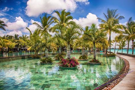 Mauritius 2018 2124 Bearbeitet 1 1200x800 - Translate our site -  -